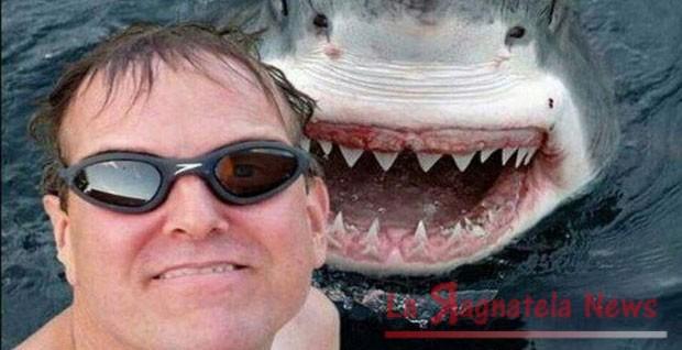 Rigenerare i denti come fa lo squalo