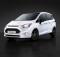 Ford-B-MAX-Sport-calandra
