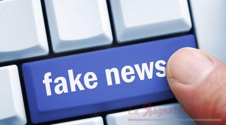 Internet, Boldrini: avviare indagine conoscitiva su fake news